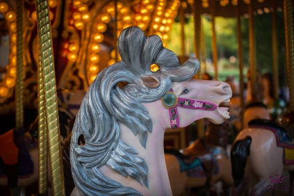 More Carousel Fun in St. George, Utah.